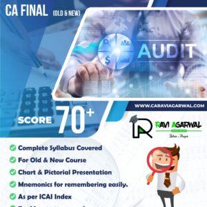Auditpedia